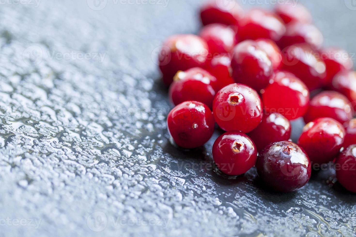 Wet cranberry  on a dark stone wet background photo