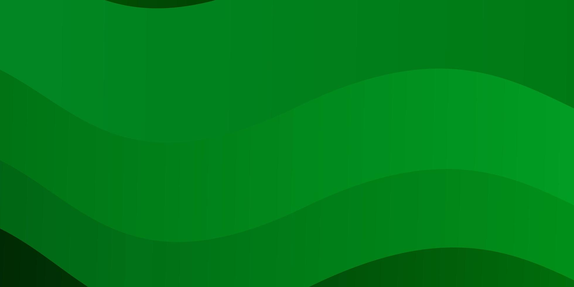 Light Green background with curved lines. vector