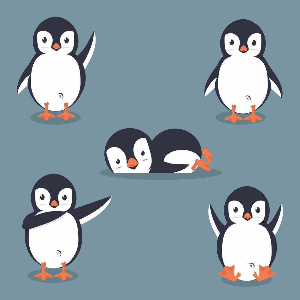 colección de pingüinos de dibujos animados vector