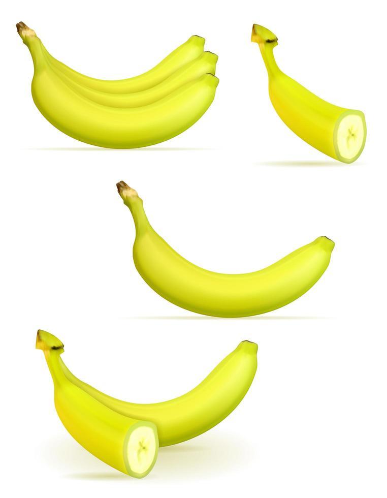 plátano maduro amarillo y algo de verde vector