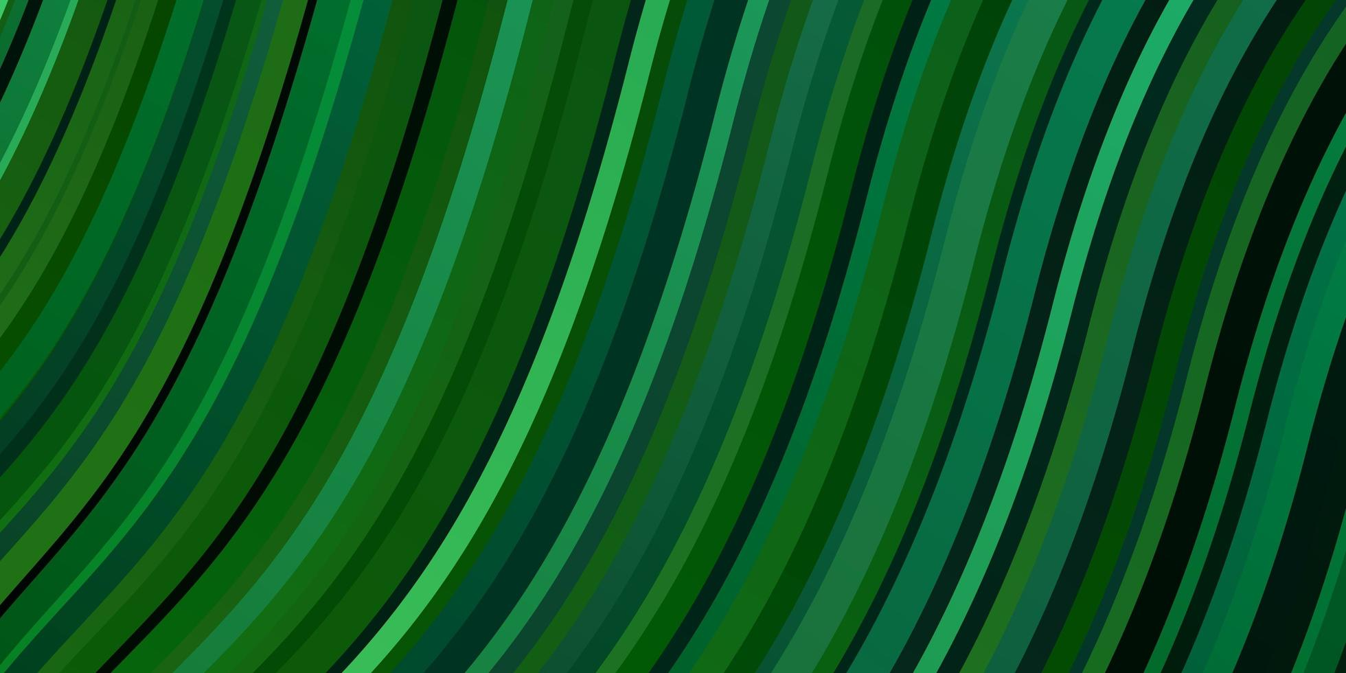 Light Green texture with curves. vector