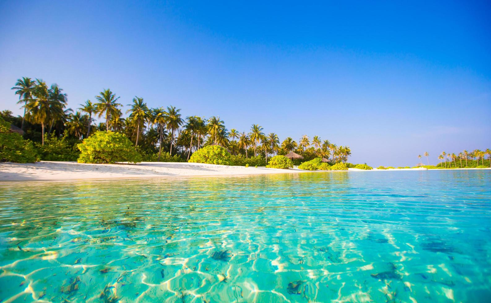 Beautiful blue water at a tropical beach photo