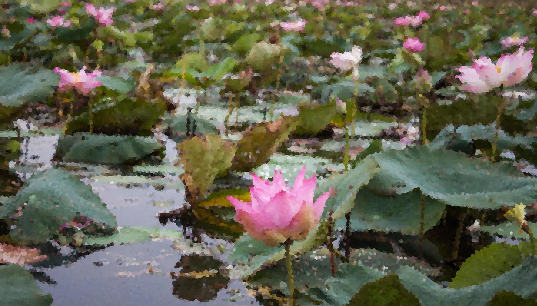 estanque de lirios con flores de loto rosa foto