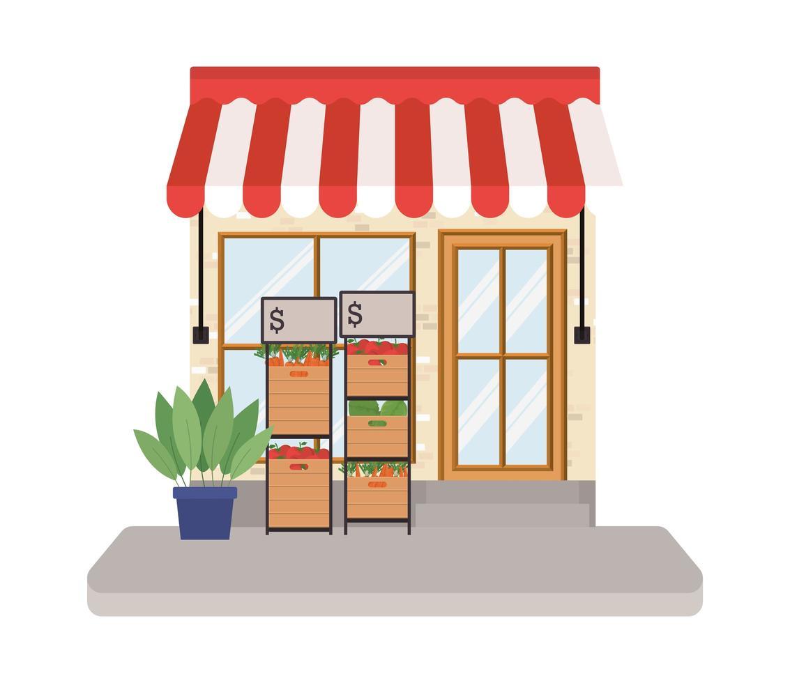 almacenar con carpa y verduras dentro de cajas vector
