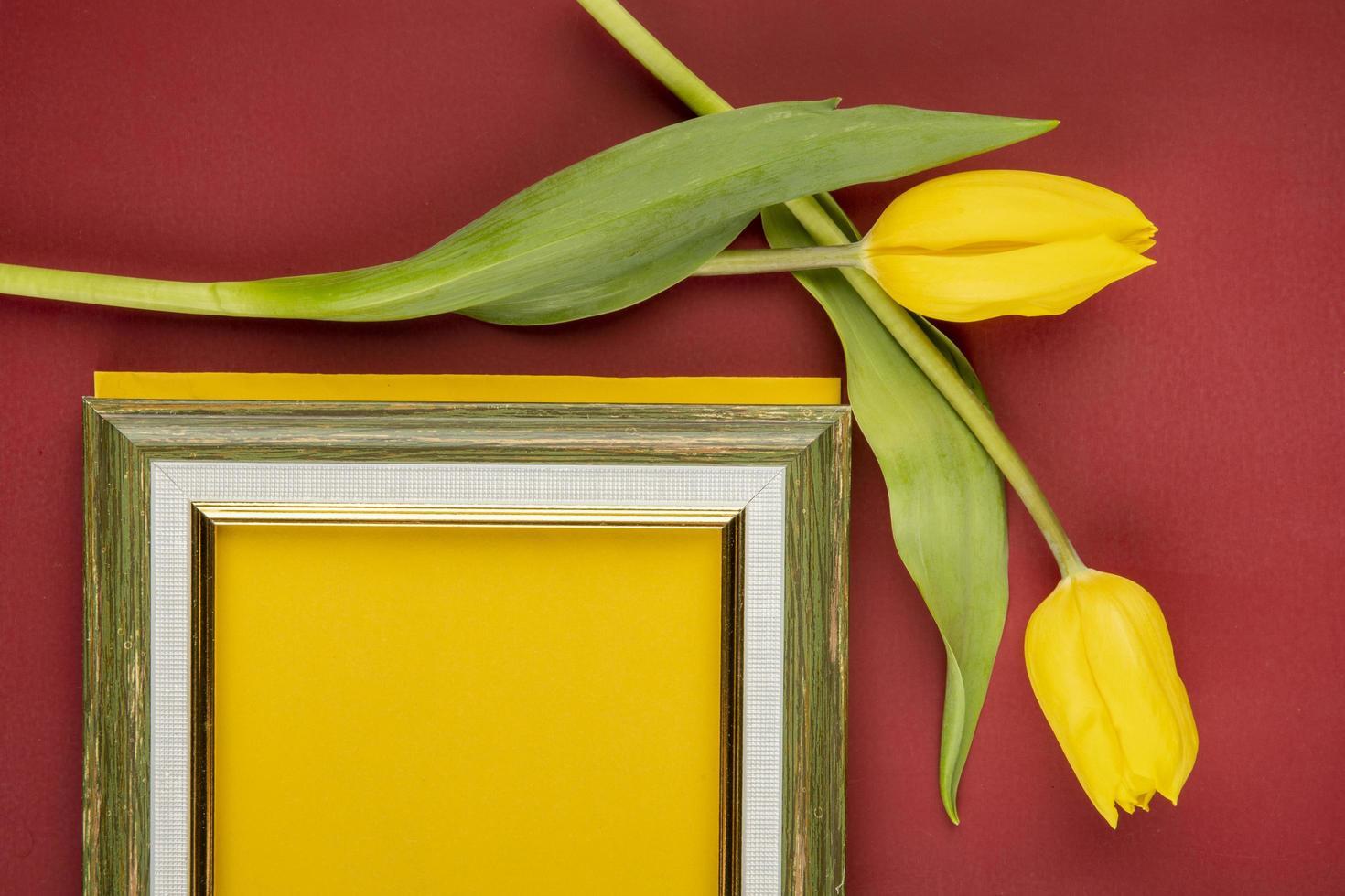 Vista superior de un marco de imagen vacío con tulipanes amarillos sobre un fondo rojo. foto