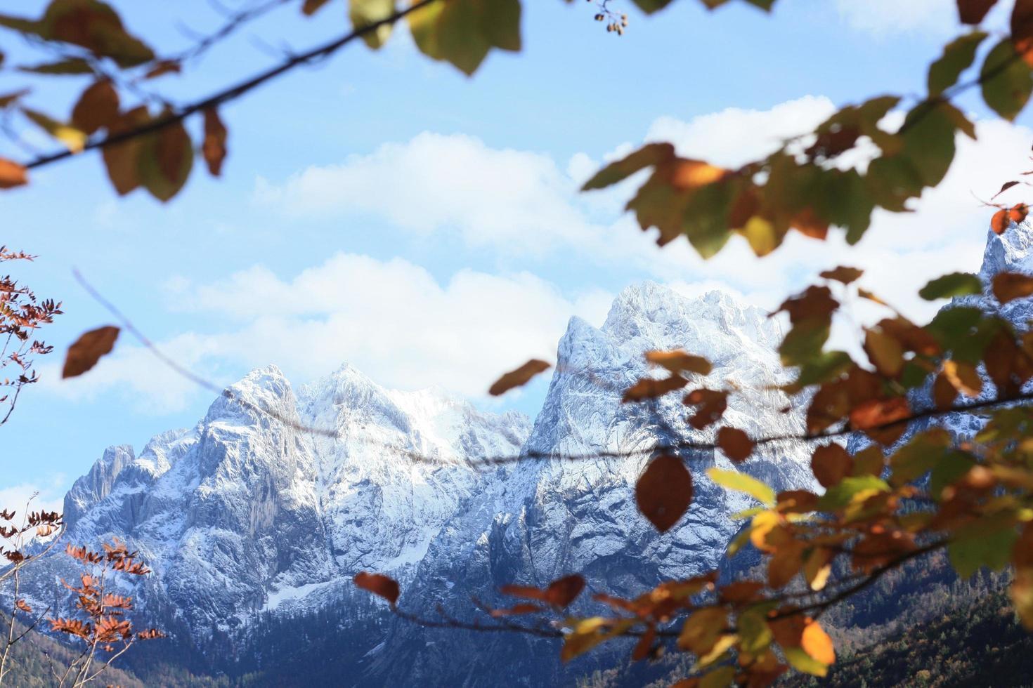 montañas nevadas a través de hojas de otoño foto