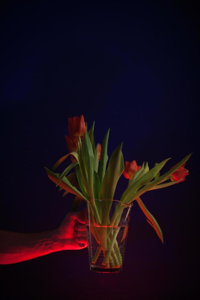 tulipanes rojos en un jarrón de vidrio transparente foto