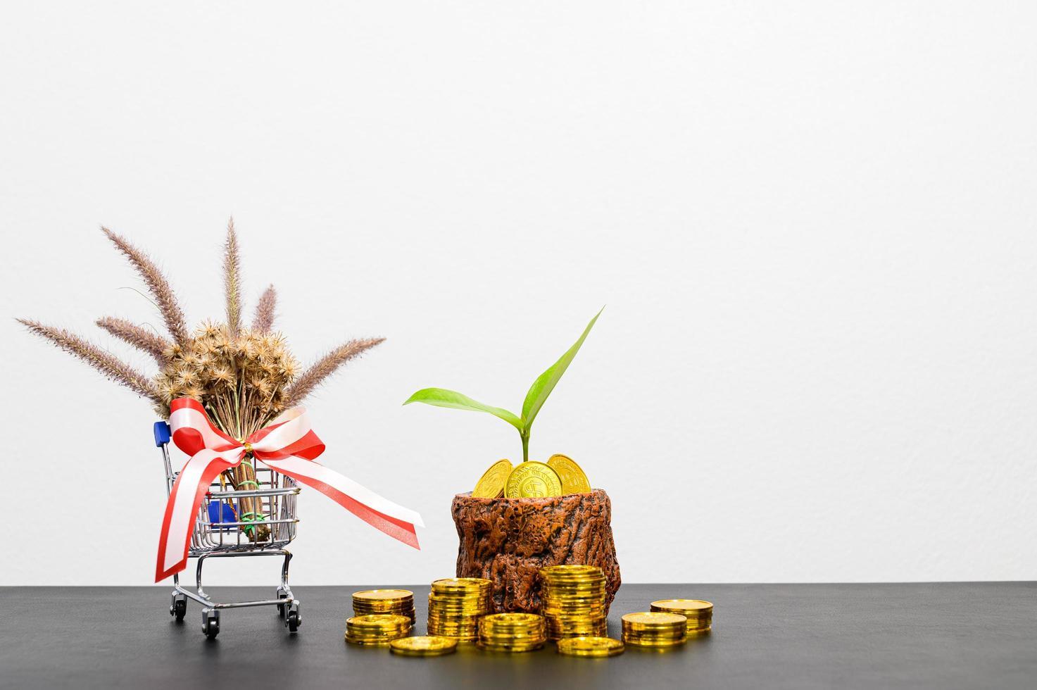 concepto de crecimiento financiero con monedas foto