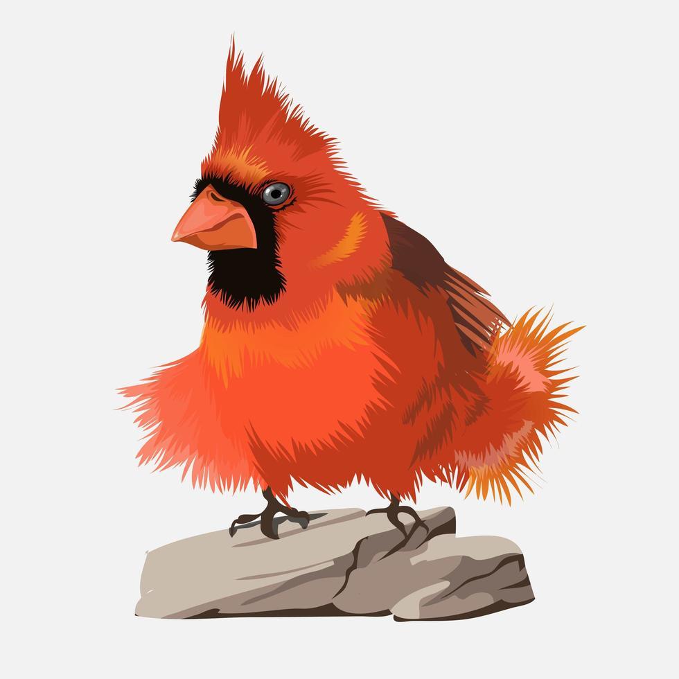pequeño pájaro rojo brillante con cara negra y gran mechón vertical vector