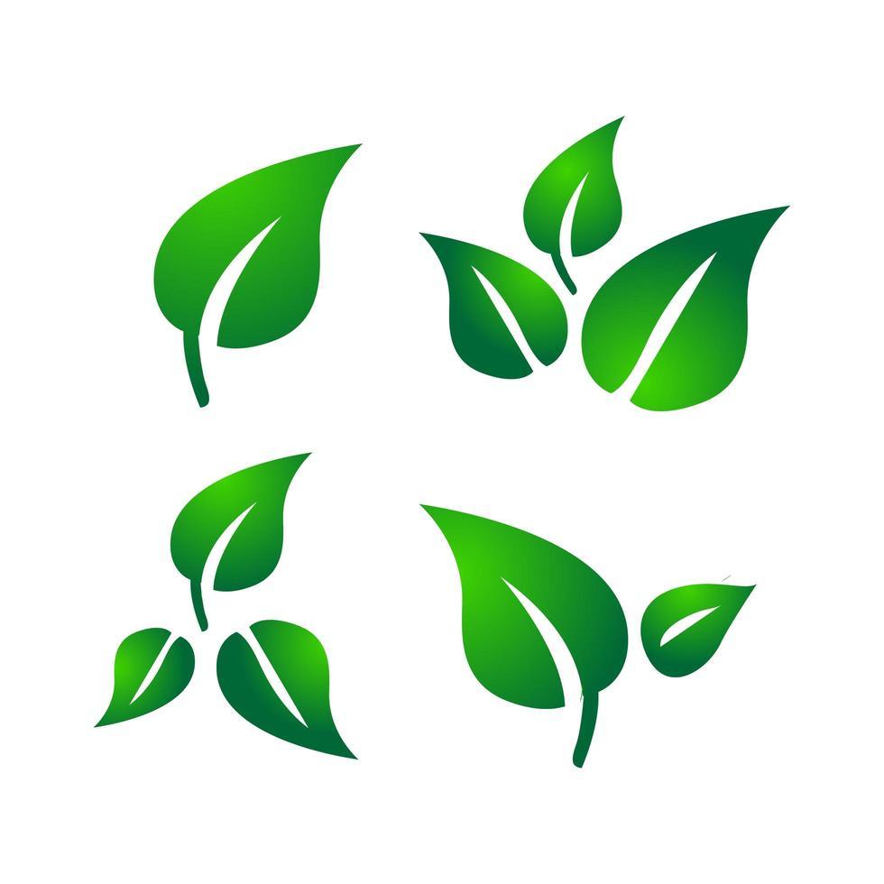 colección de logos de hojas verdes vector