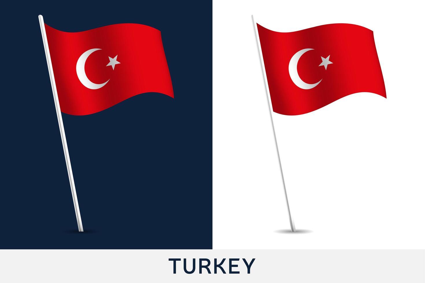 bandera de turquía vector