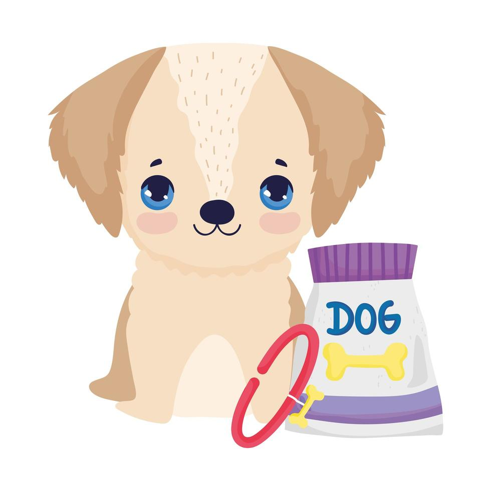 little dog sitting with collar and food package pets vector