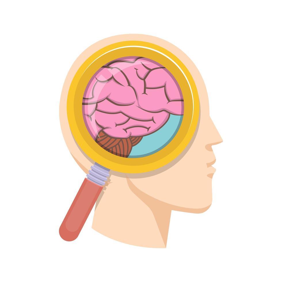 Ilustración de diseño de vector de estudio de cerebro humano aislado sobre fondo blanco
