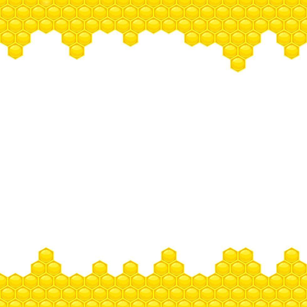 Honey background vector design illustration