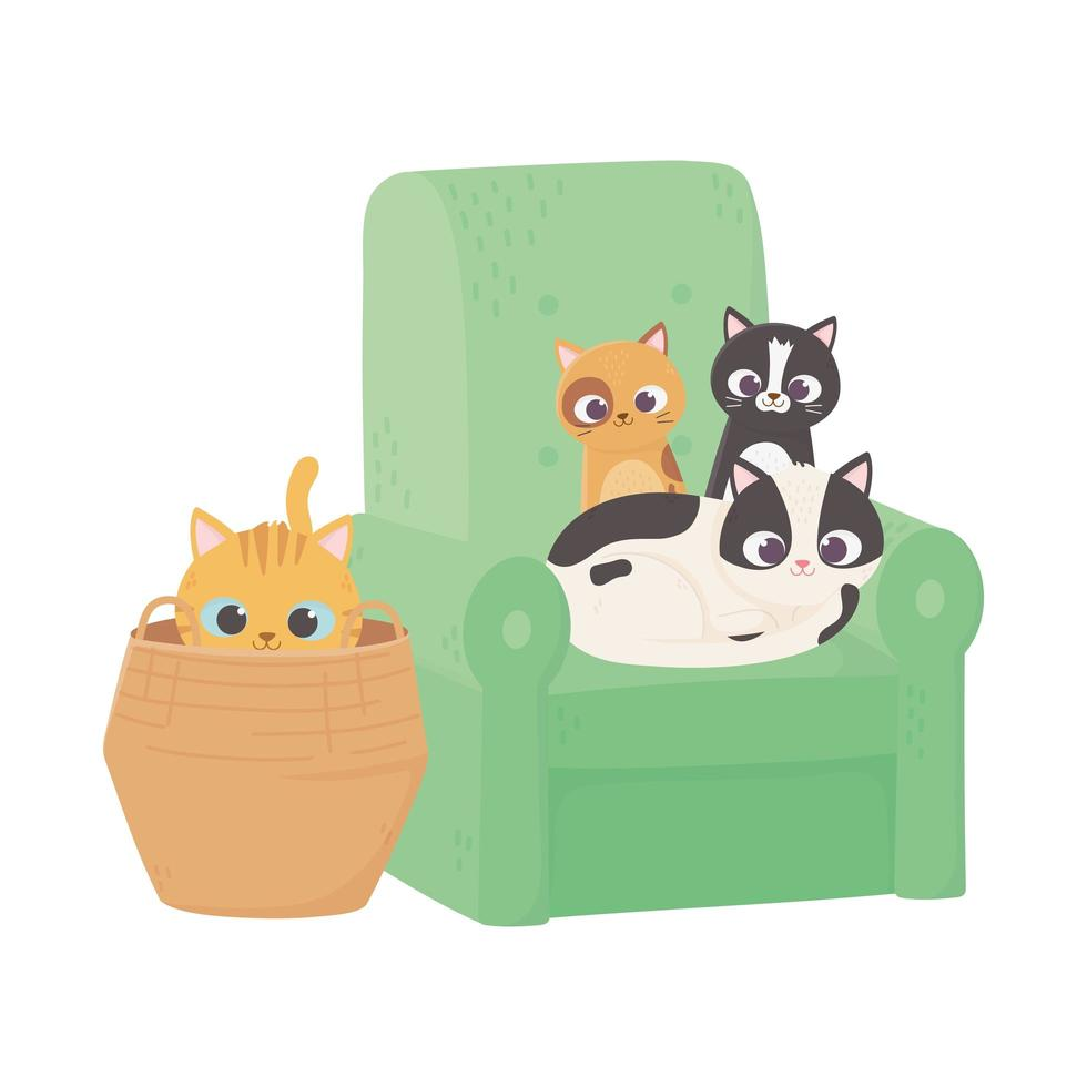 cats make me happy, kittens in sofa and cat in wicker basket vector