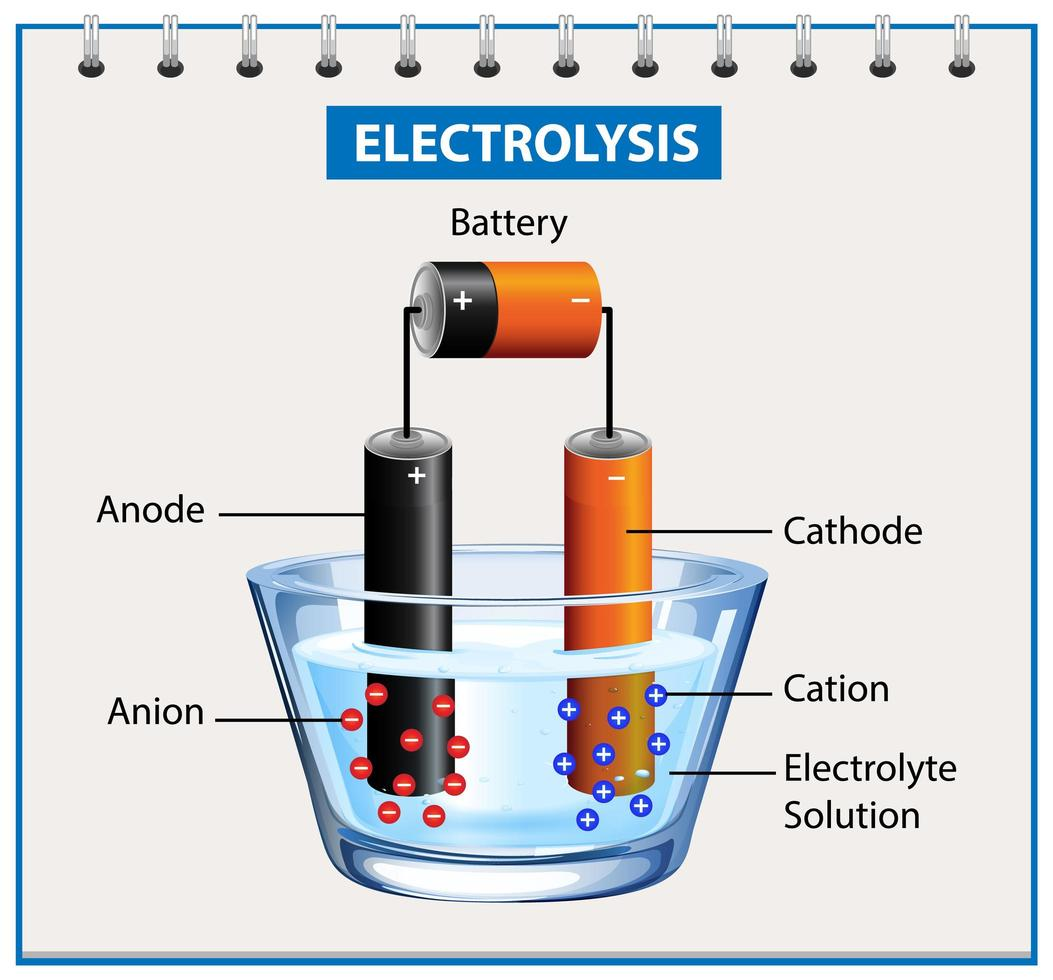 Electrolysis diagram experiment for education vector