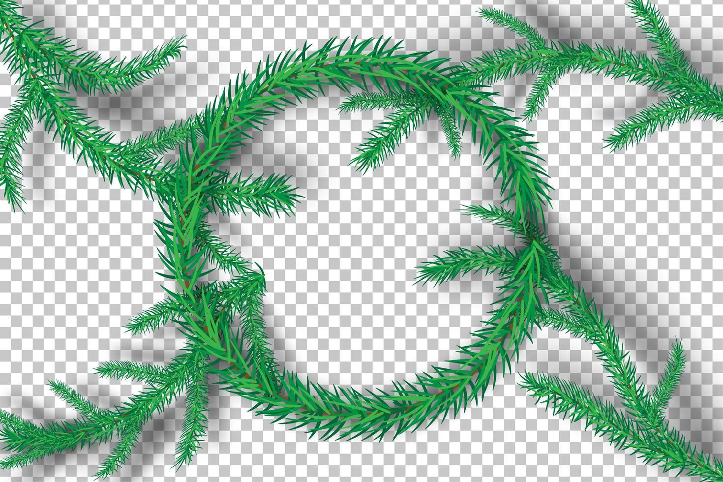 ramas de árboles de navidad sobre fondo de transparencia vector
