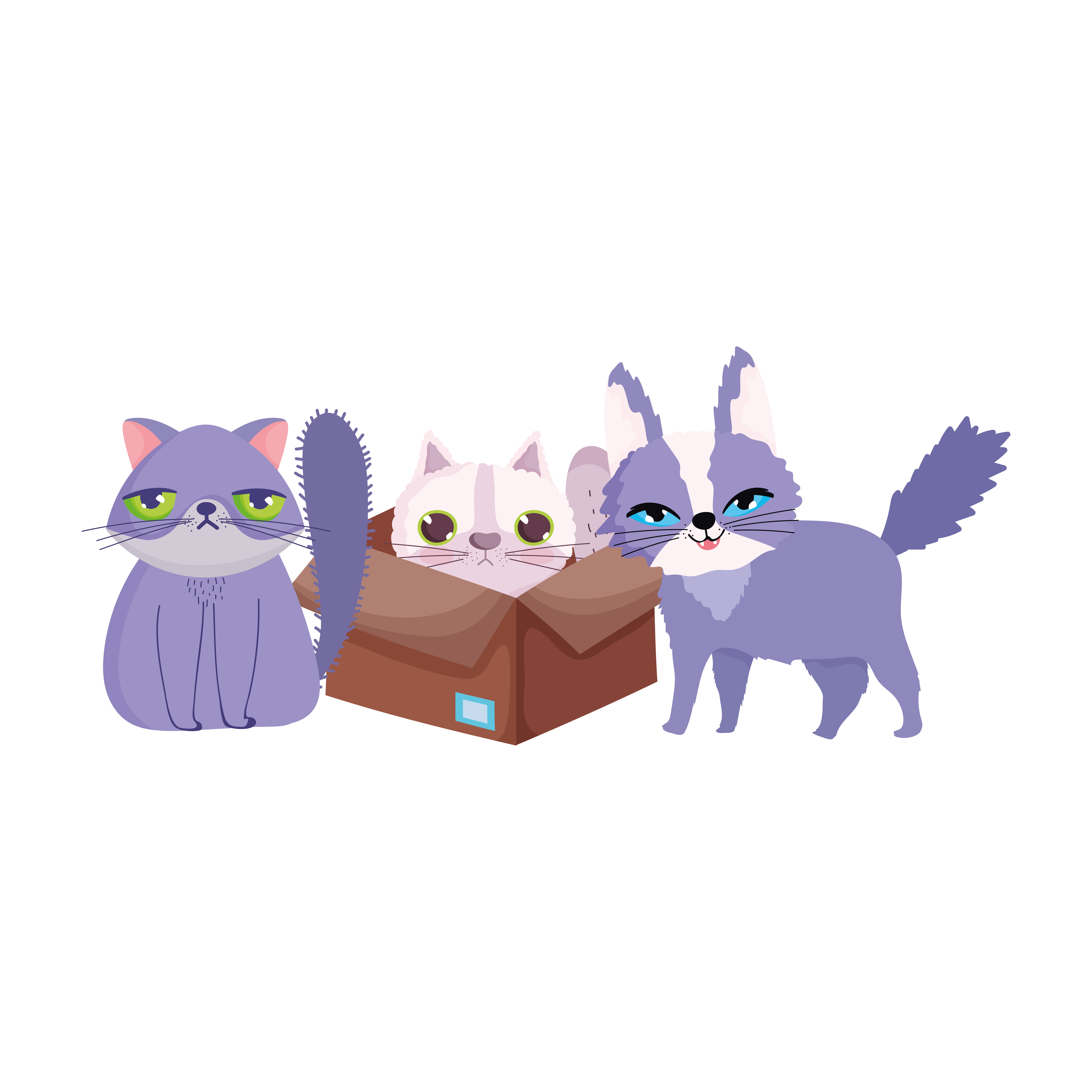 Pet Shop Ugly And Fluffy Cats In Box Animal Domestic Cartoon Download Free Vectors Clipart Graphics Vector Art