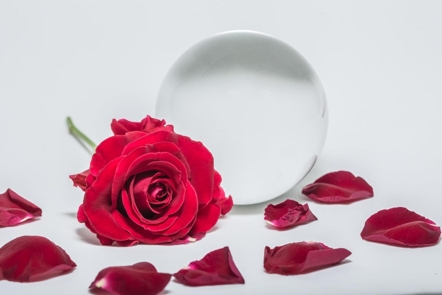 Valentine's Day Background photo