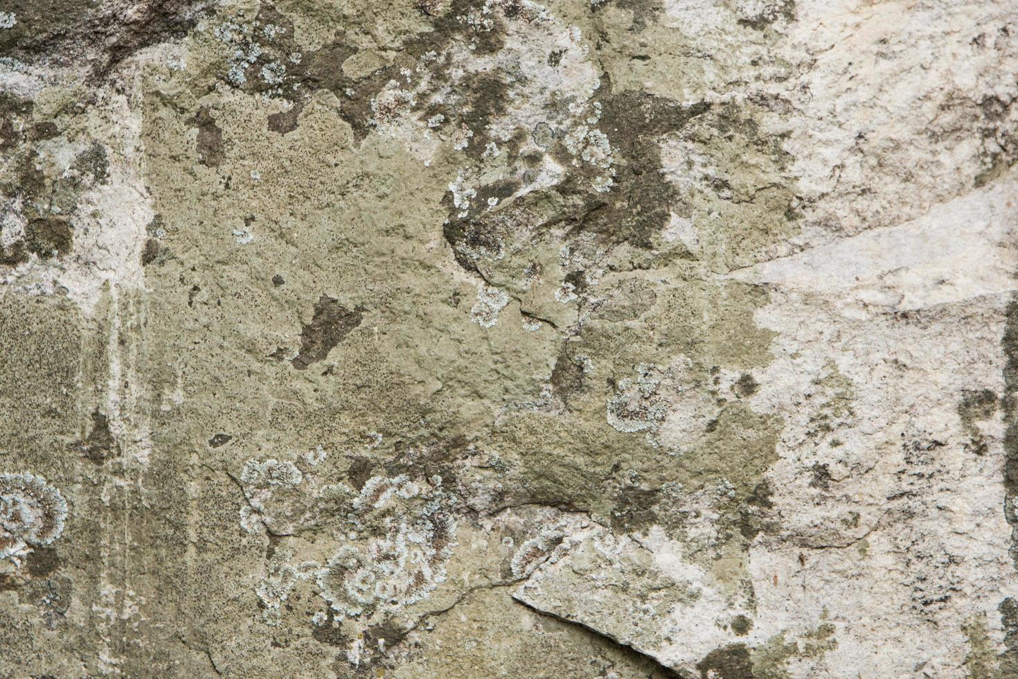 fondo de piedra estampada foto