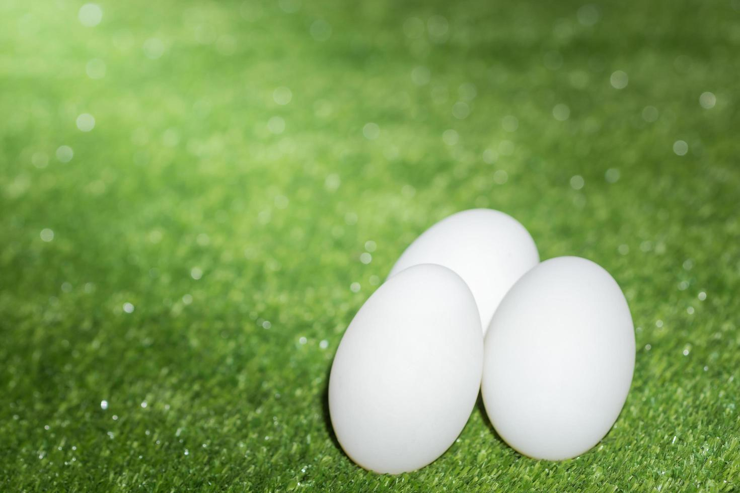 Duck eggs on green background photo