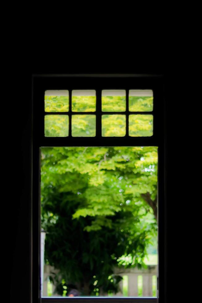silueta de una ventana y un jardín foto
