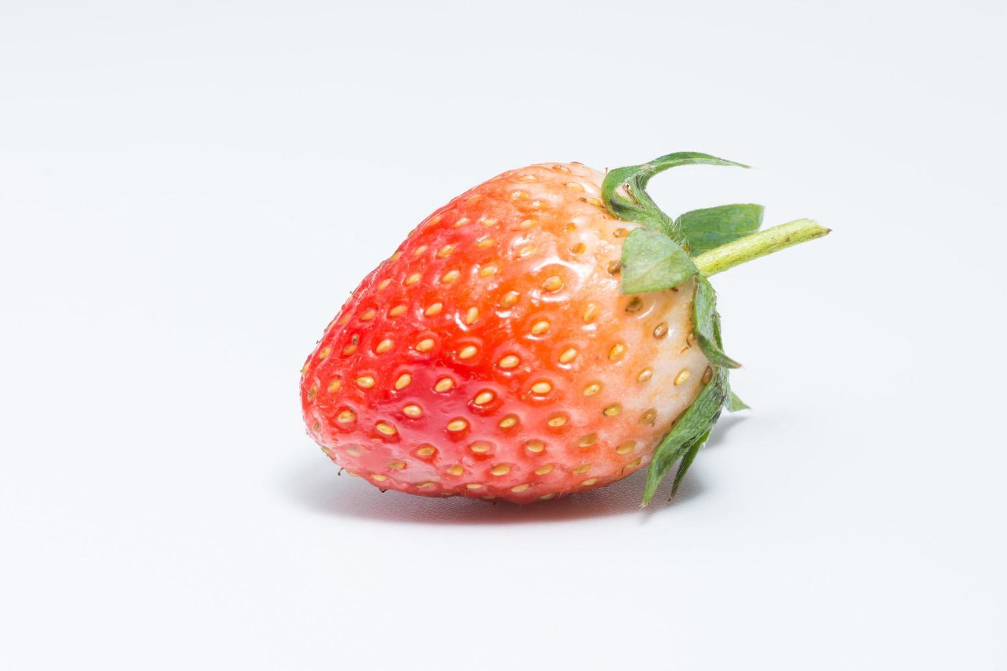 fresa sobre fondo blanco foto