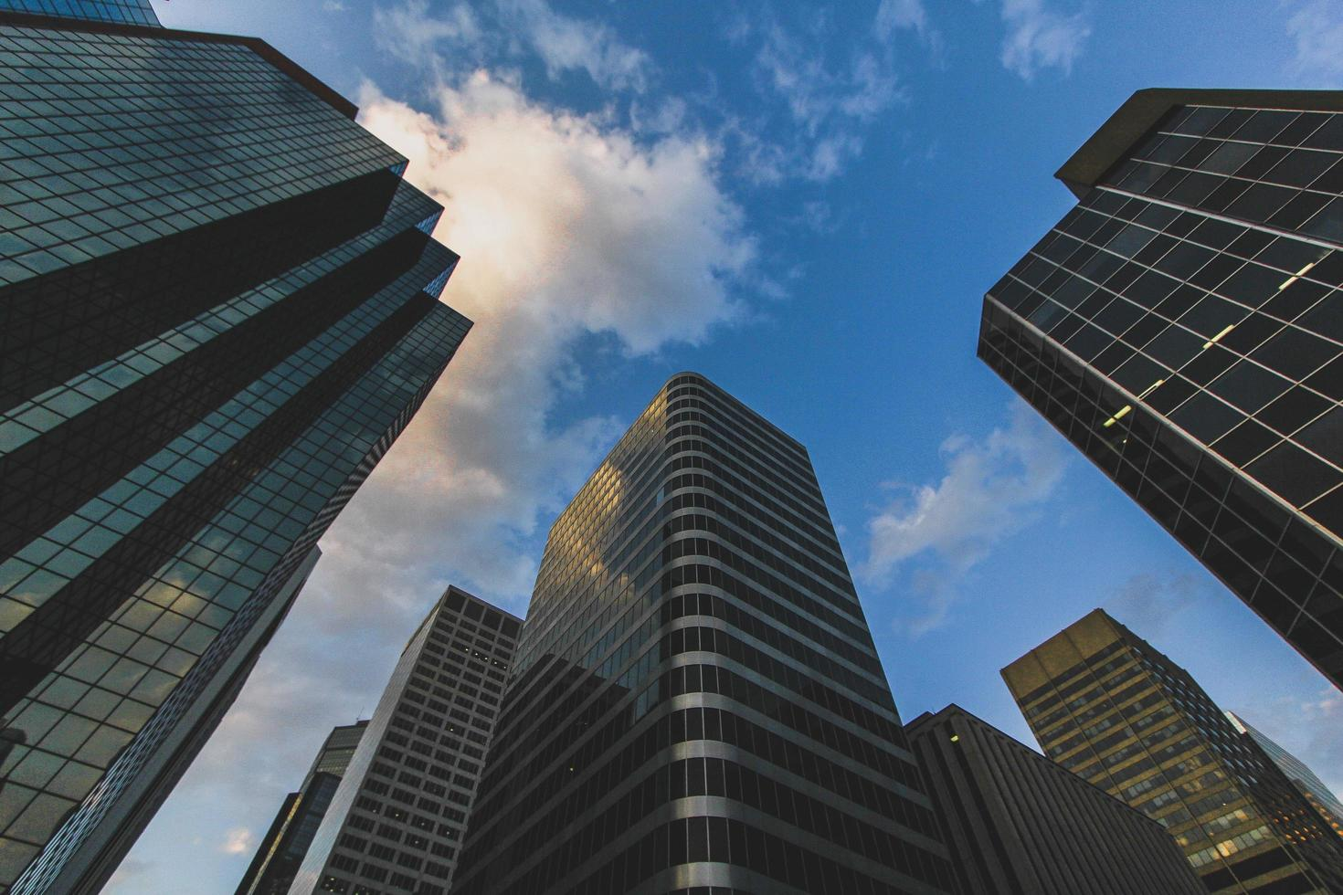 Low angle photography of high rise buildings photo