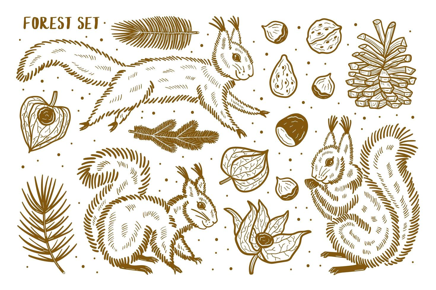 Forest set of elements, clip art. Animals, nature, plants. vector