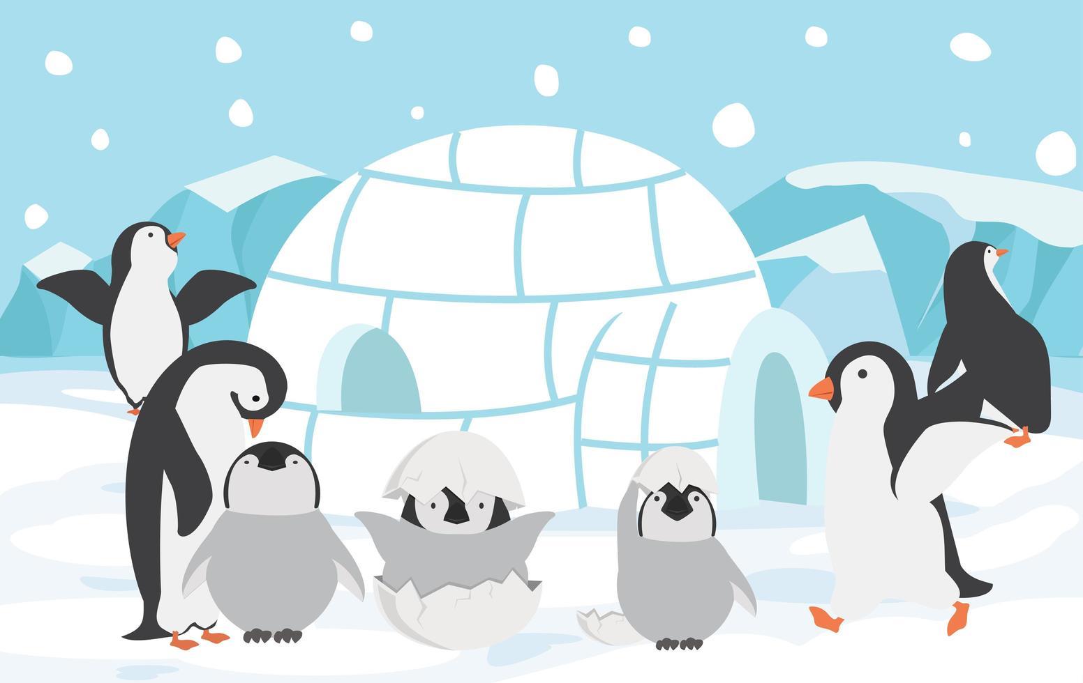 familia de pingüinos al aire libre vector