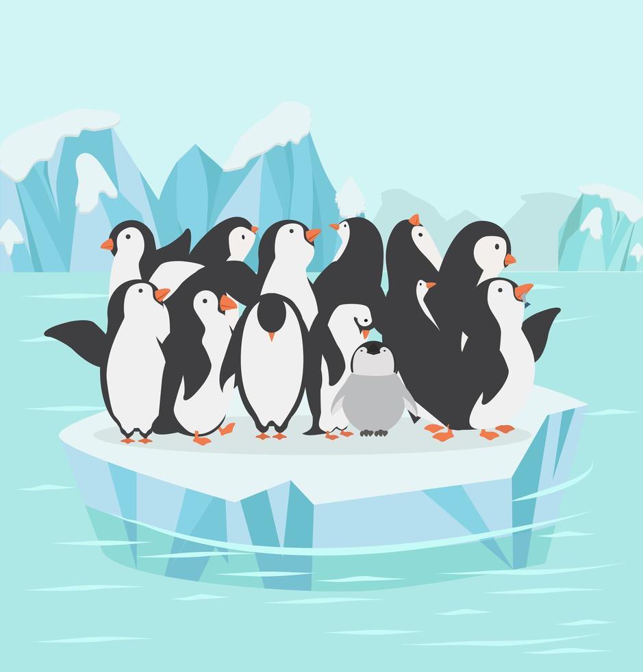 familia de pingüinos en el polo norte vector