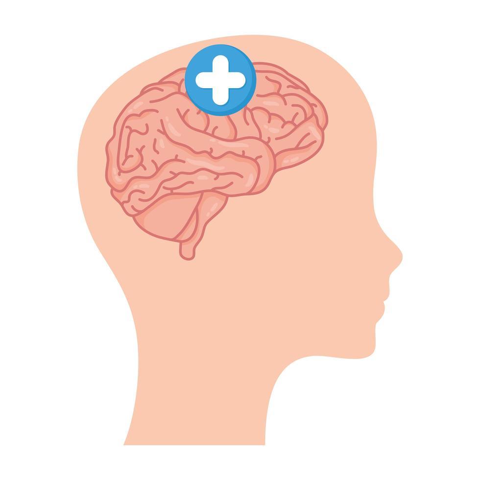 cabeza de perfil con cerebro humano y símbolo más vector