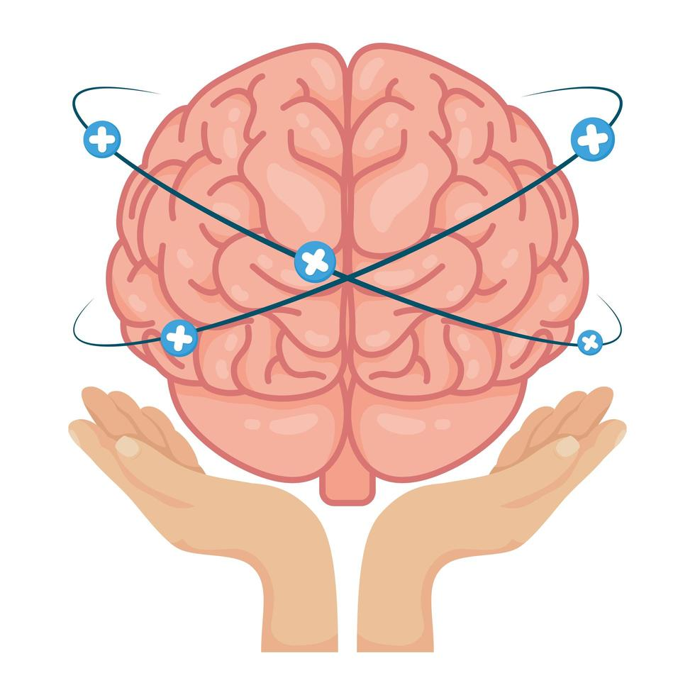hands lifting human brain with plus symbols vector