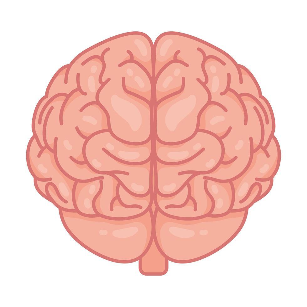 human brain, mental health care symbol vector