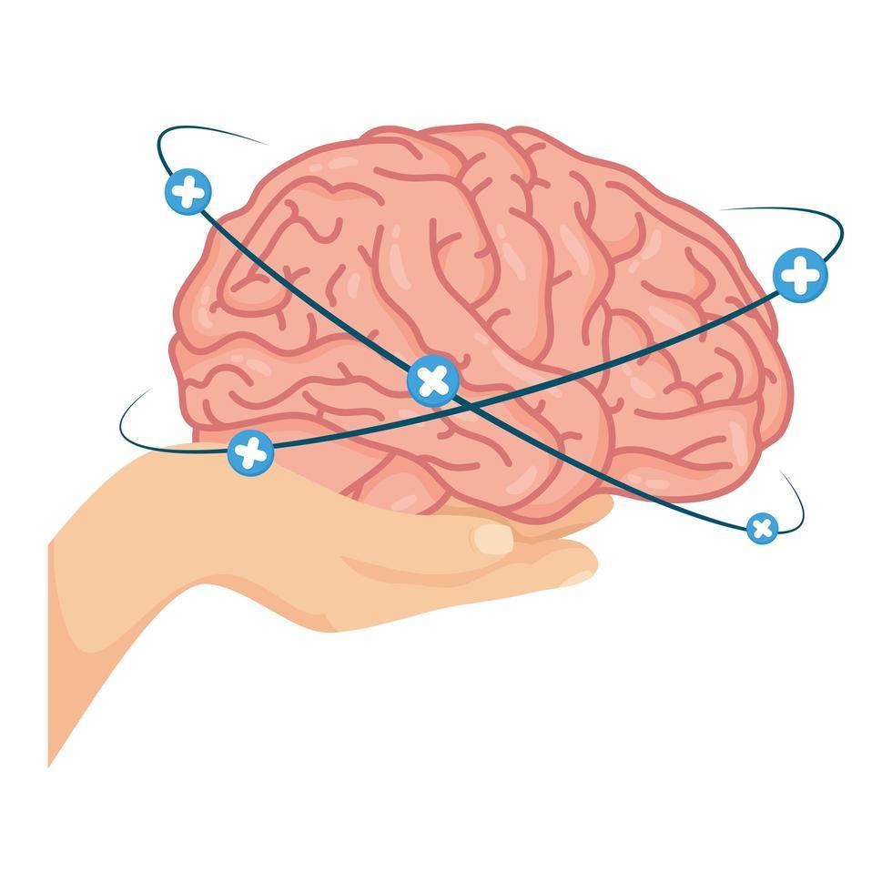 Mano levantando el cerebro humano con símbolos más vector