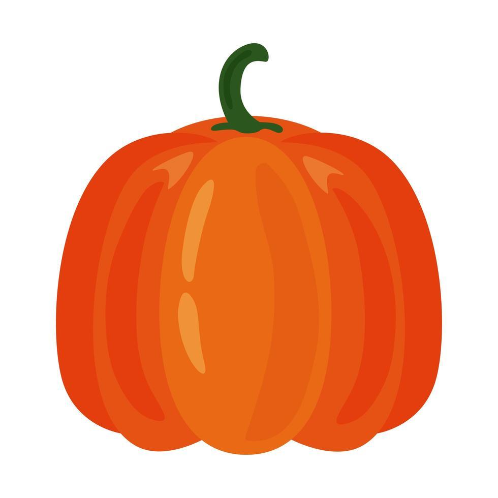 icono de comida sana de fruta de calabaza fresca vector