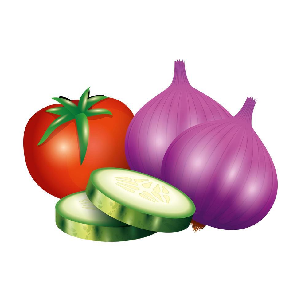 tomate, pepino y ajo, vegetal, vector, diseño vector