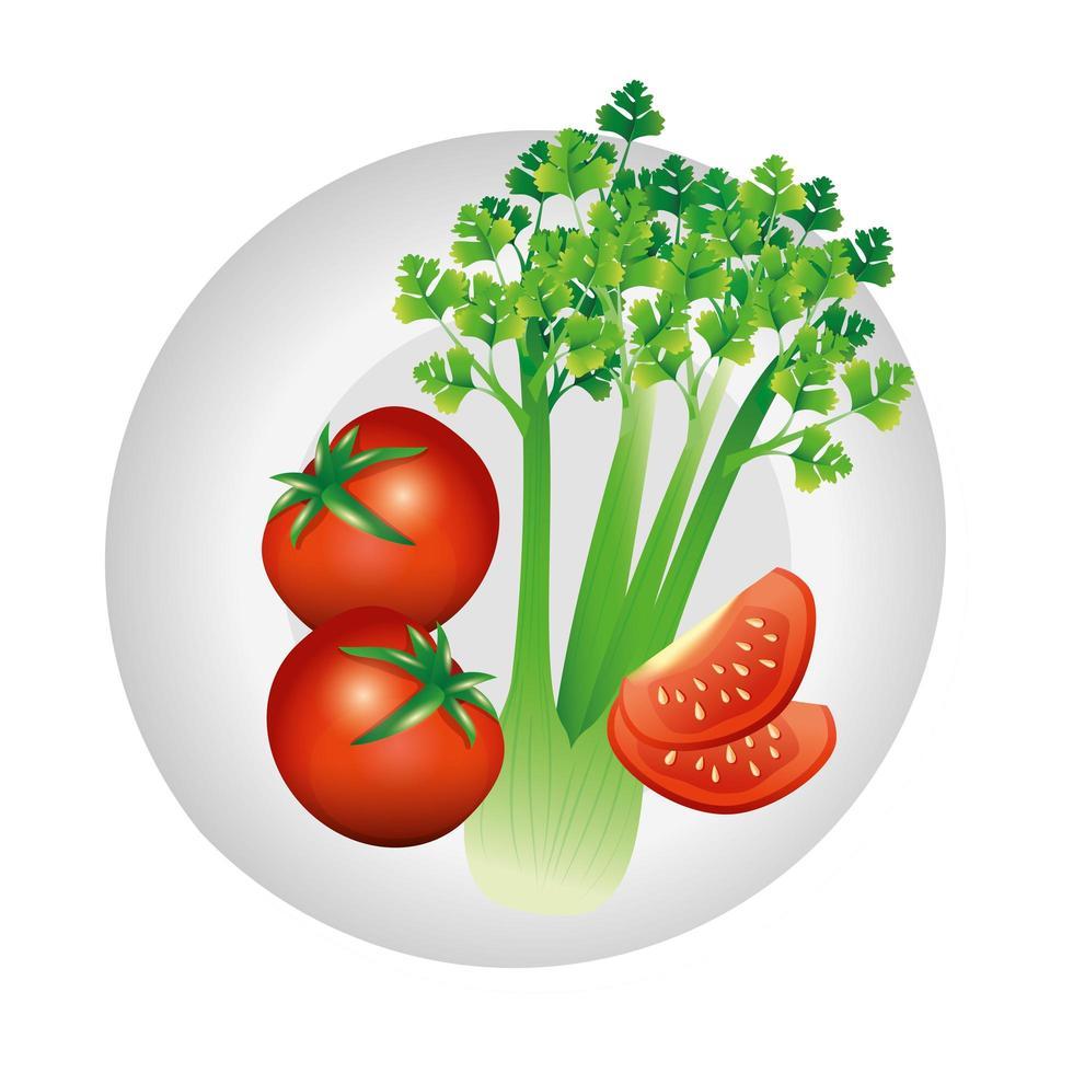 diseño de vectores vegetales de apio y tomate