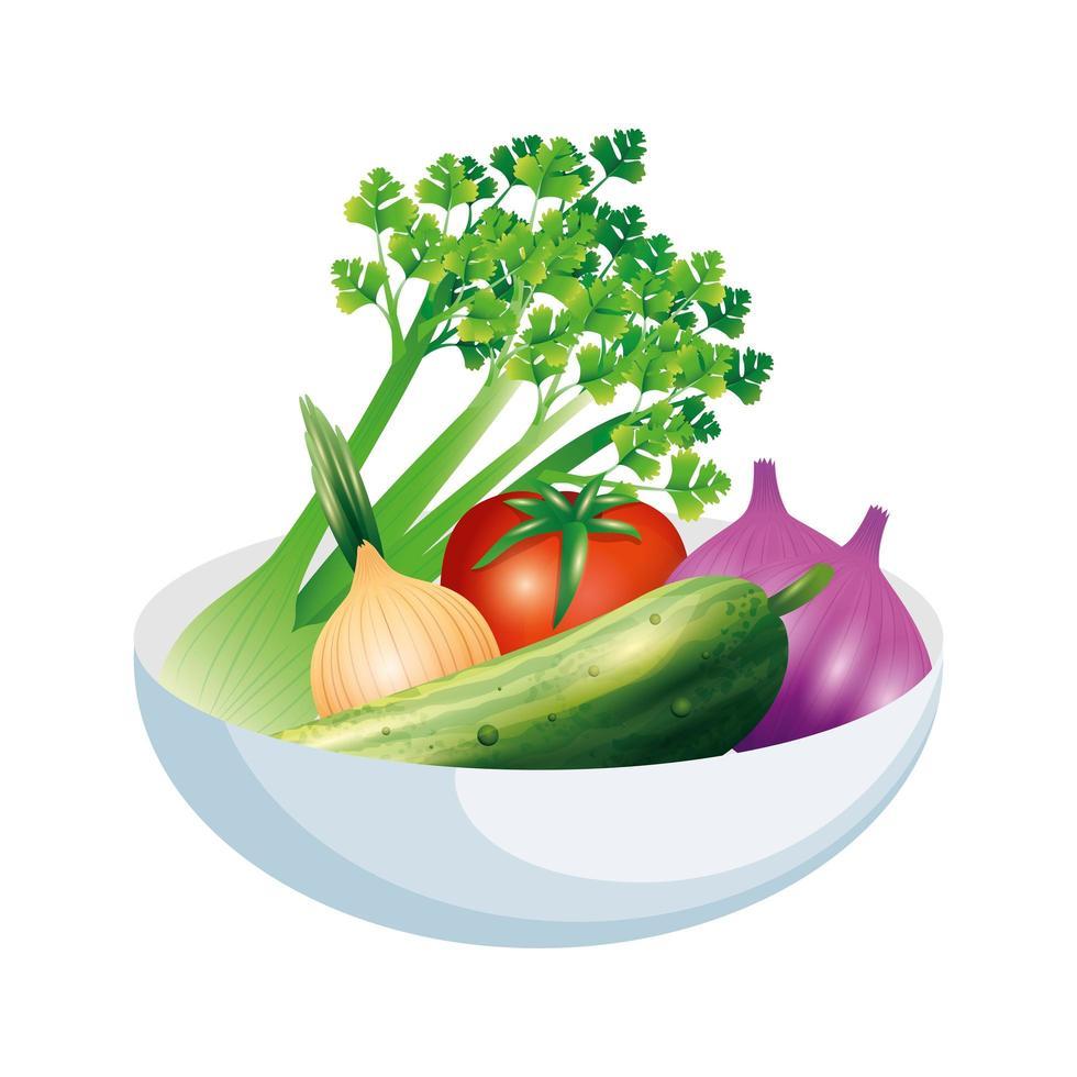 apio ajo cebolla pepino y tomate vegetal diseño vectorial vector