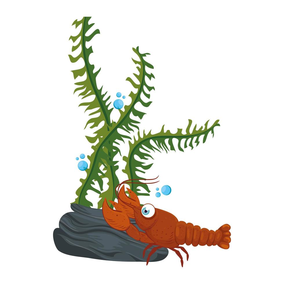 sea underwater life, lobster with seaweed on white background vector