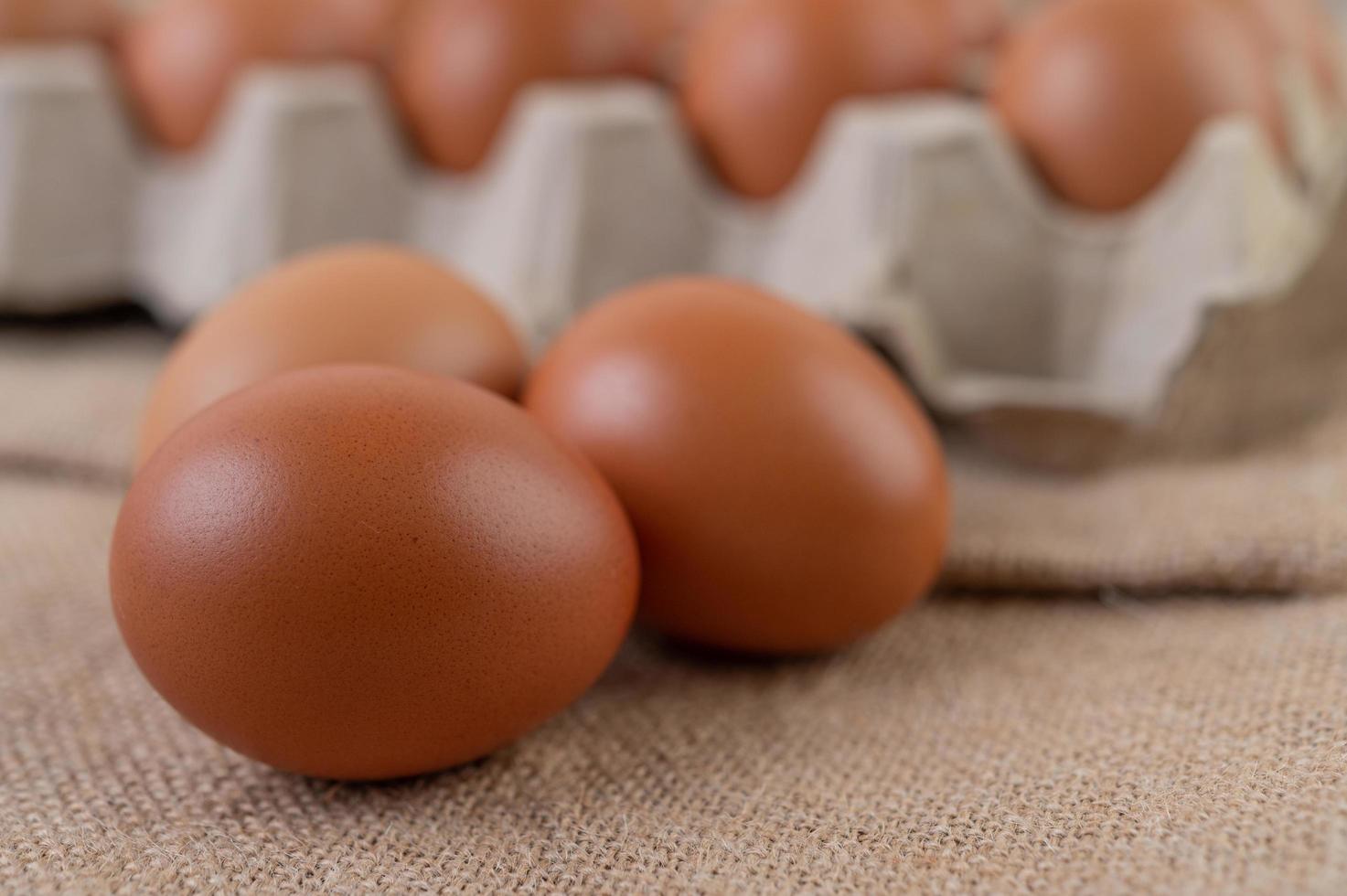huevos de gallina orgánicos crudos foto