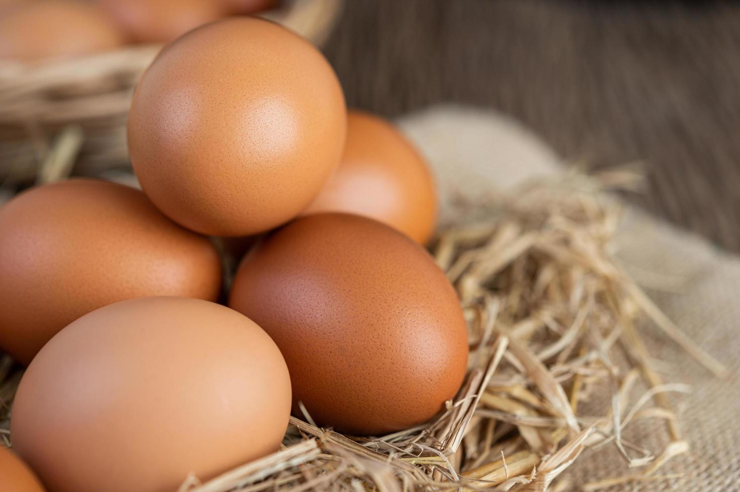 Raw eggs on hemp and straw photo