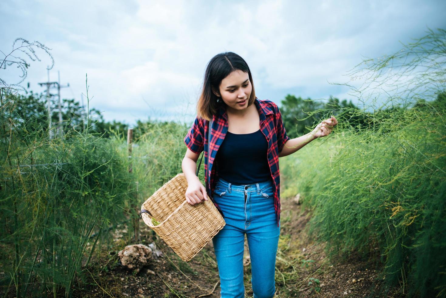 joven agricultor cosechando espárragos frescos foto