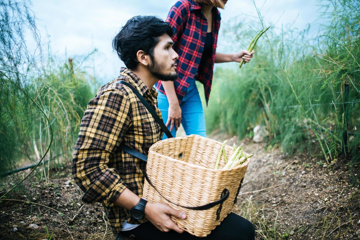 Pareja joven agricultor cosechando espárragos frescos foto