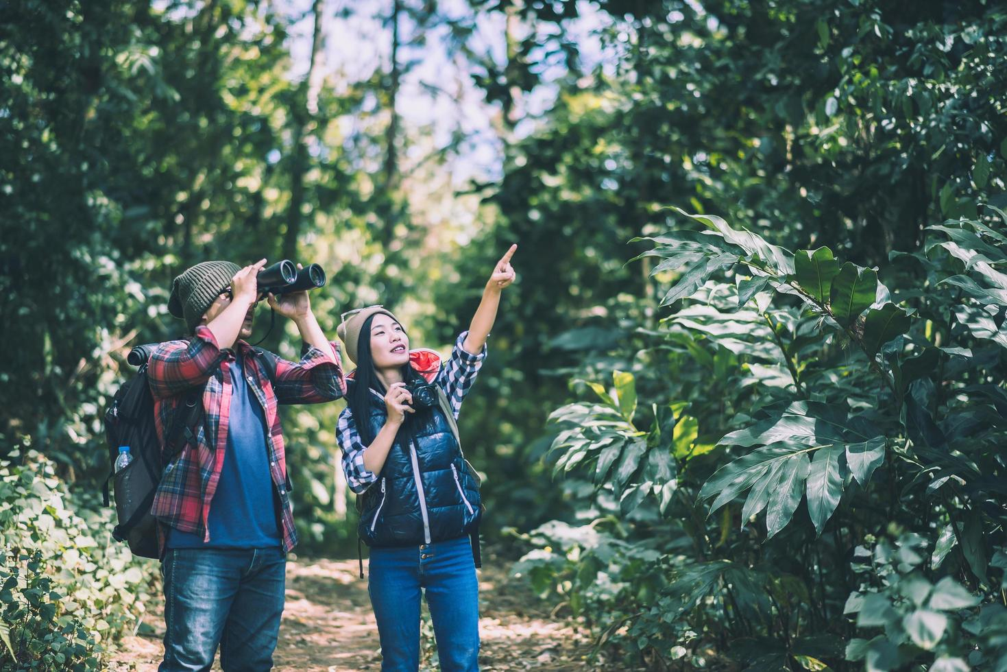 Young hikers with binoculars in the forest photo