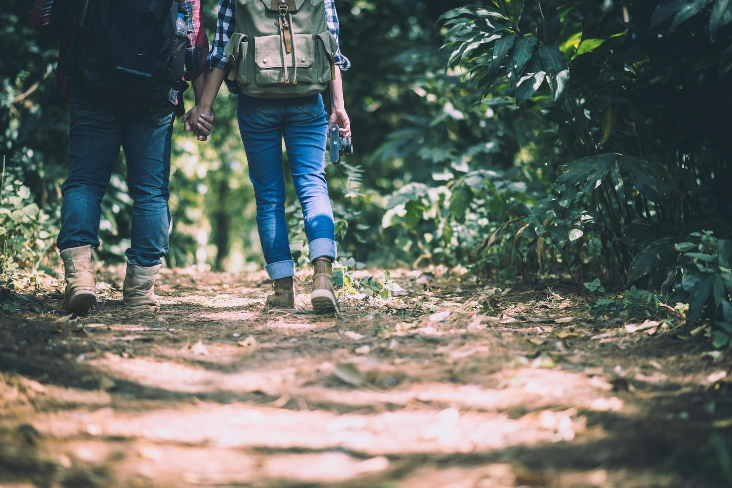Young active travelers holding hands while walking in the forest photo
