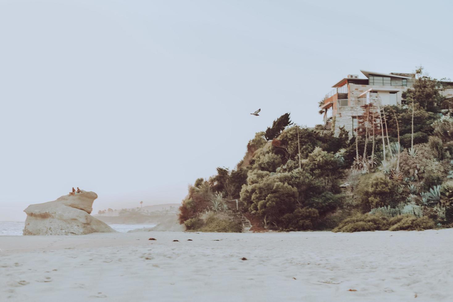 Newport Beach, 2020 - Casa blanca y marrón cerca del cuerpo de agua durante el día foto
