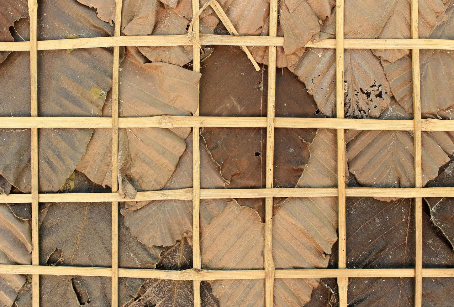 Dry leaves and weaved bamboo photo