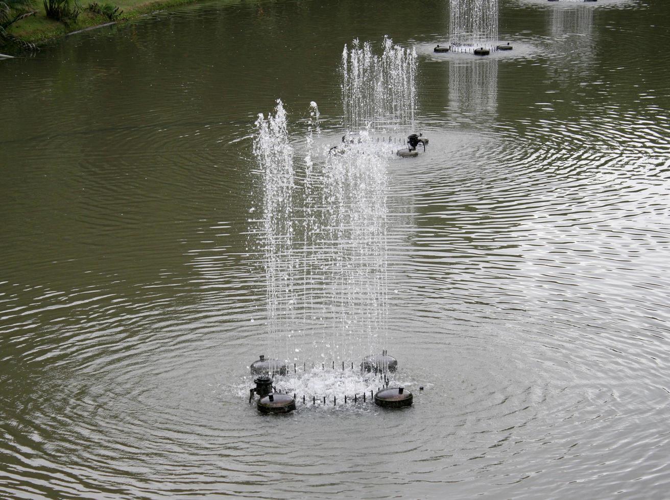 fuentes en el parque foto