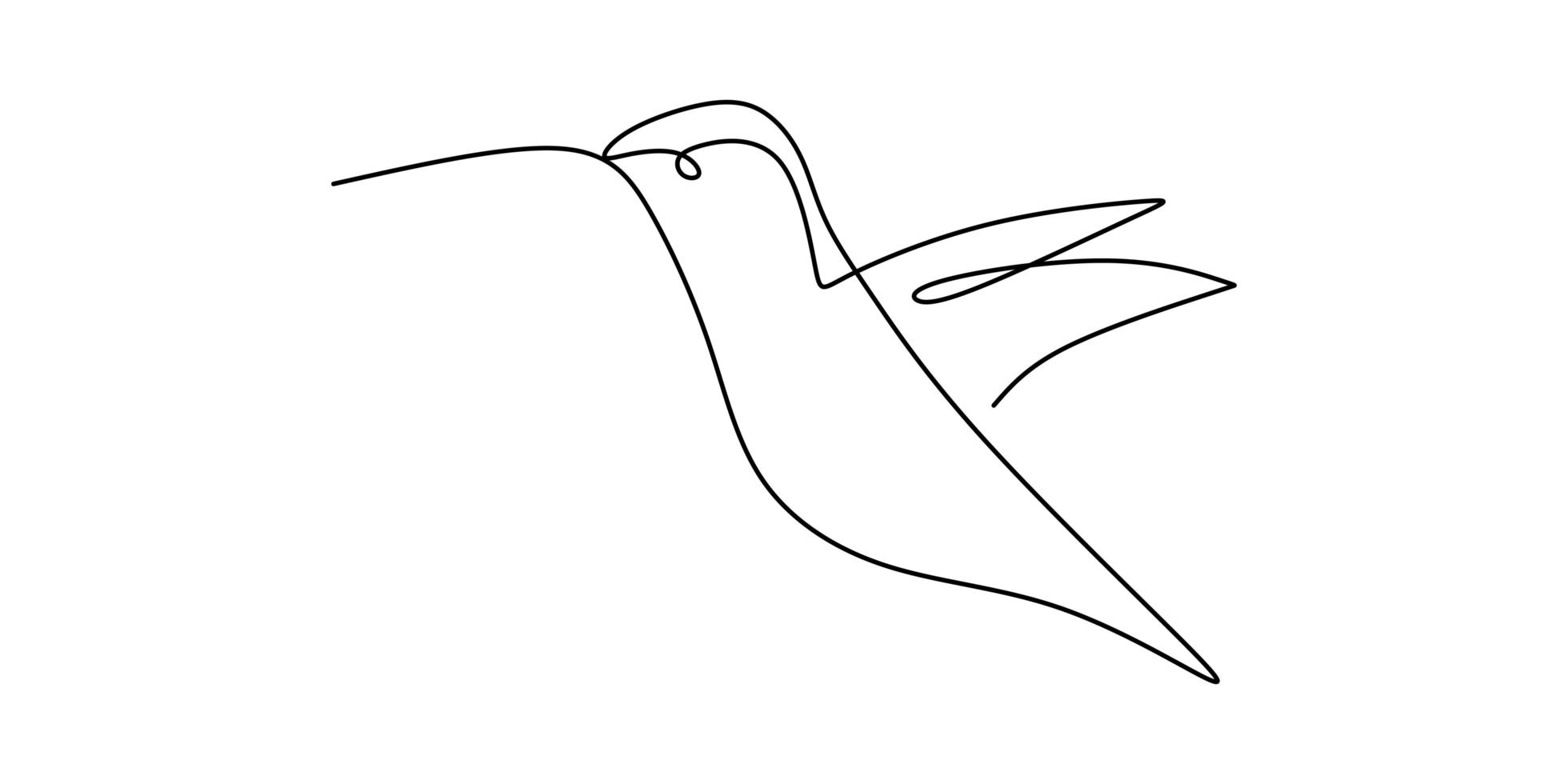 un dibujo de línea continua de lindo colibrí. dibujado a mano línea arte pájaro tropical. vector